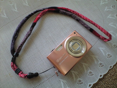 Ca390007