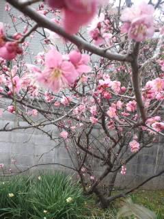 ぬるい春空気〜(笑)