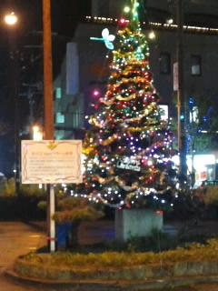 駅前にクリスマスツリーです♪
