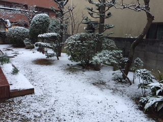 雪…です♪